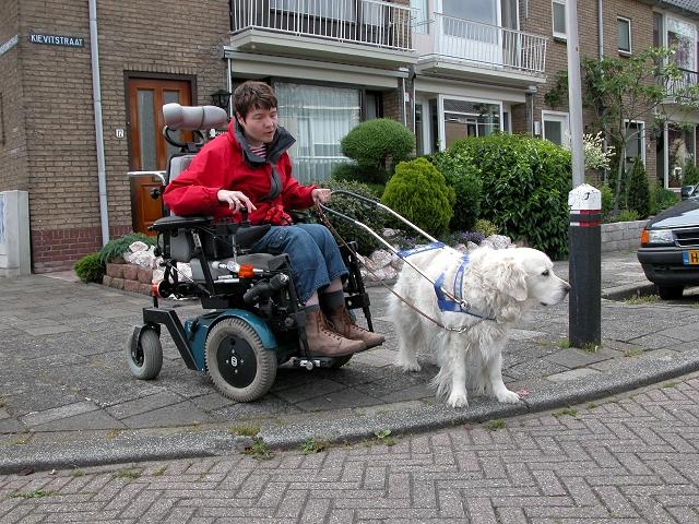 Beau geleidt de elektrische rolstoel tijdens het oversteken van een straat.